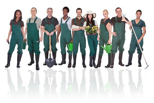 handyman-services-team-image