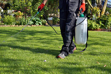 We understand your frustration with an unstopping buildup of weeds in your garden. Our gardening experts bring you professional weed control services in Switzerland. We use quality targeted herbicide spot sprays that even the most tenacious weeds can be controlled in no time!