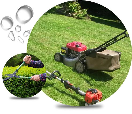 mobilehandyman-expert-gardening-services-02